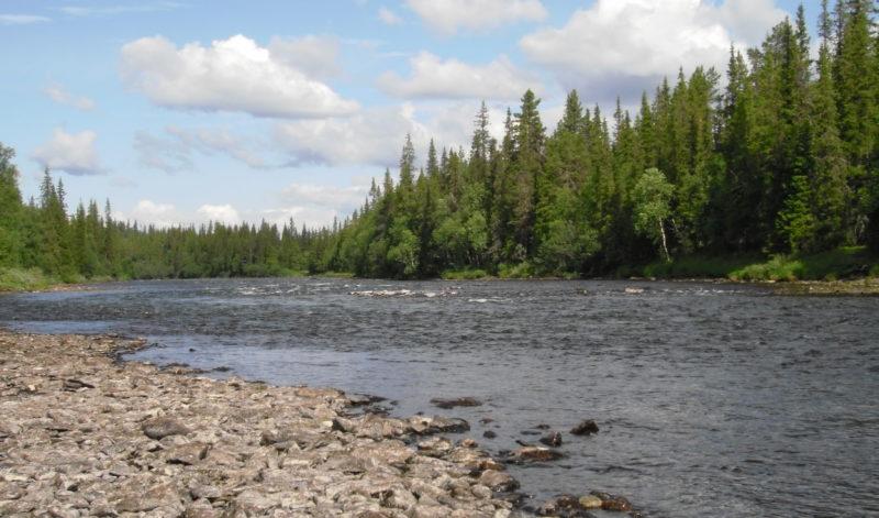 La Vindelälven, ses affluents et les lacs.